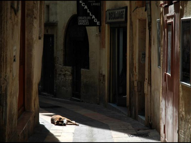 Montpellier, bain de soleil