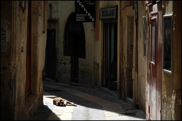 Montpellier - 2008